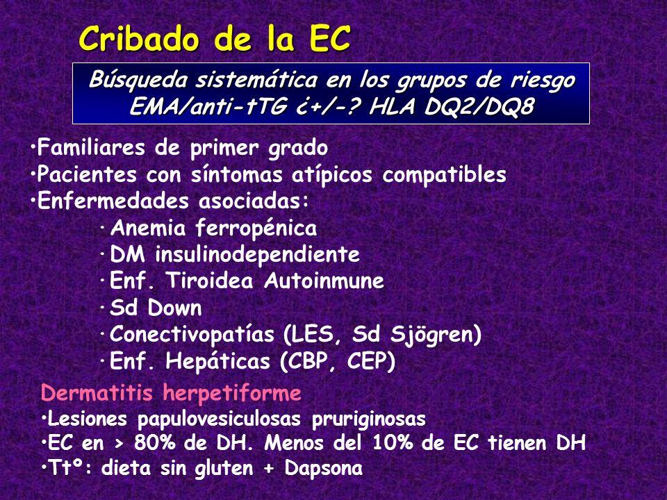 Cribado de la EC Búsqueda sistemática en los grupos de riesgo EMA/anti-tTG ¿+/-? HLA DQ2/DQ8 Familiares de primer grado Pacientes con síntomas atípico