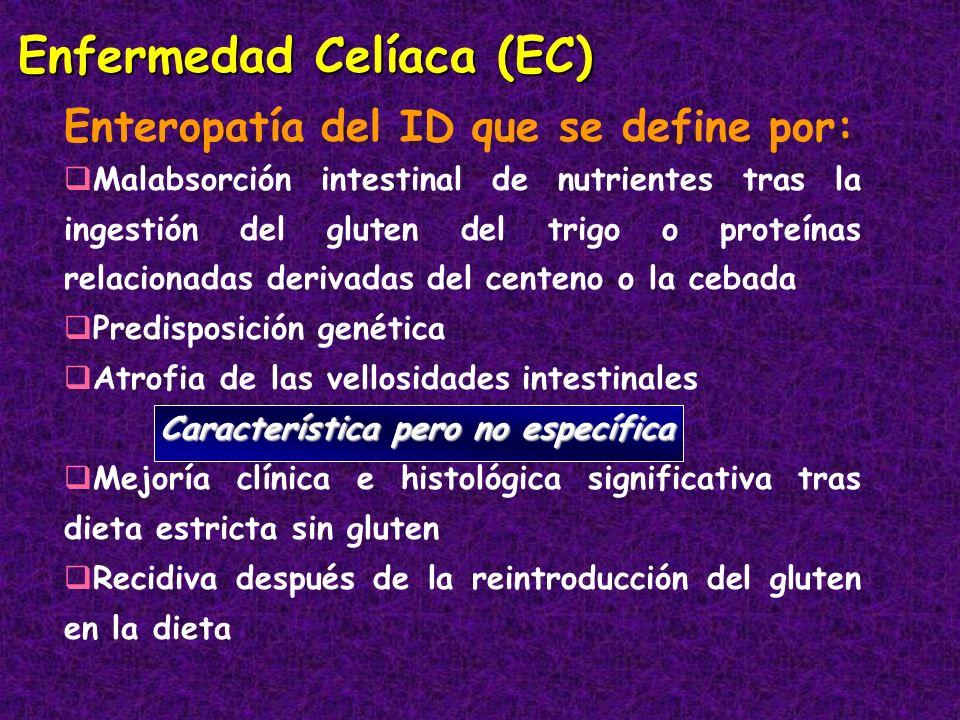 Enfermedad Celíaca (EC) Enteropatía del ID que se define por: Malabsorción intestinal de nutrientes tras la ingestión del gluten del trigo o proteínas