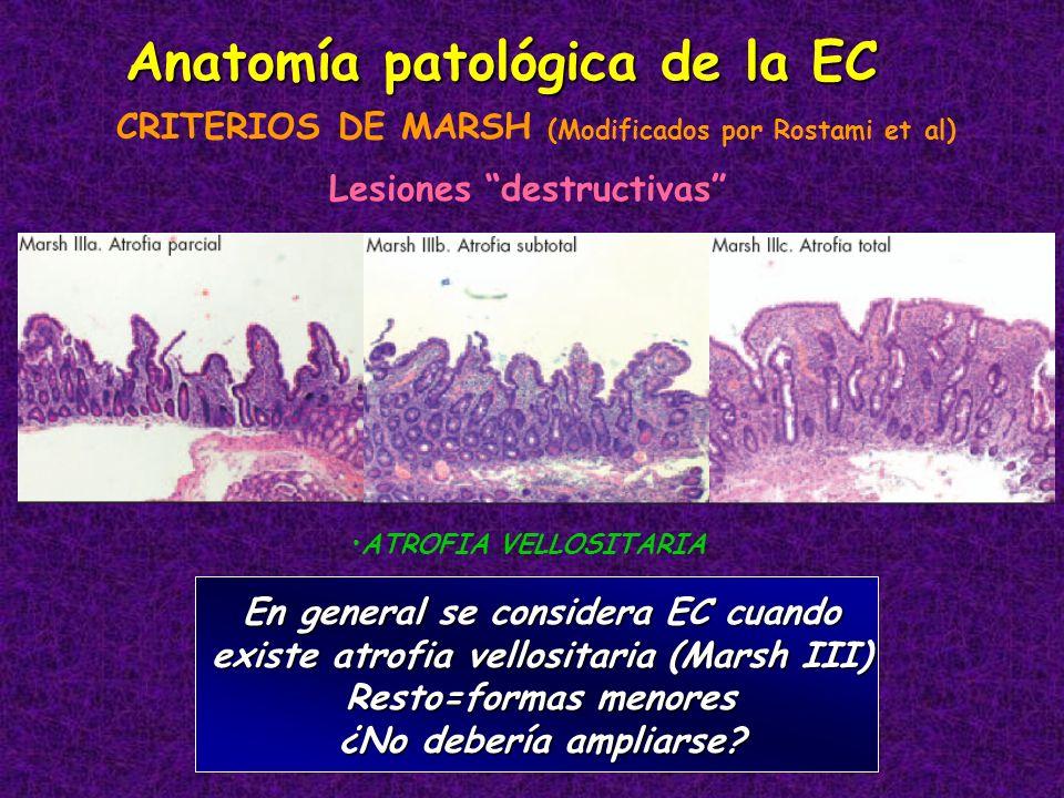 Anatomía patológica de la EC Lesiones destructivas CRITERIOS DE MARSH (Modificados por Rostami et al) En general se considera EC cuando existe atrofia