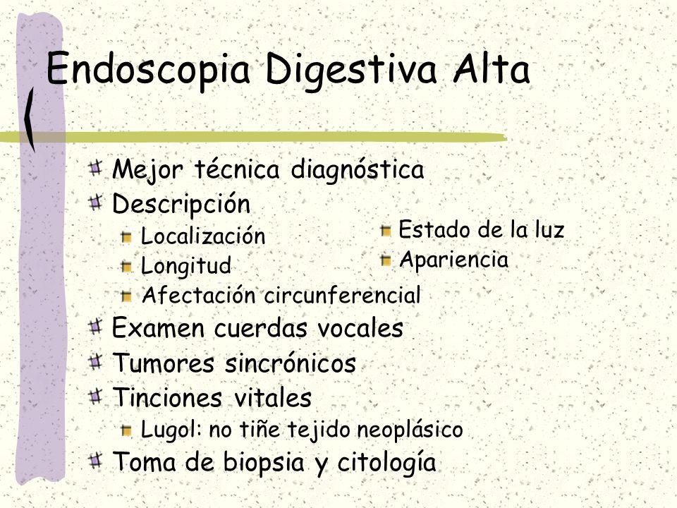 Endoscopia Digestiva Alta Mejor técnica diagnóstica Descripción Localización Longitud Afectación circunferencial Examen cuerdas vocales Tumores sincró