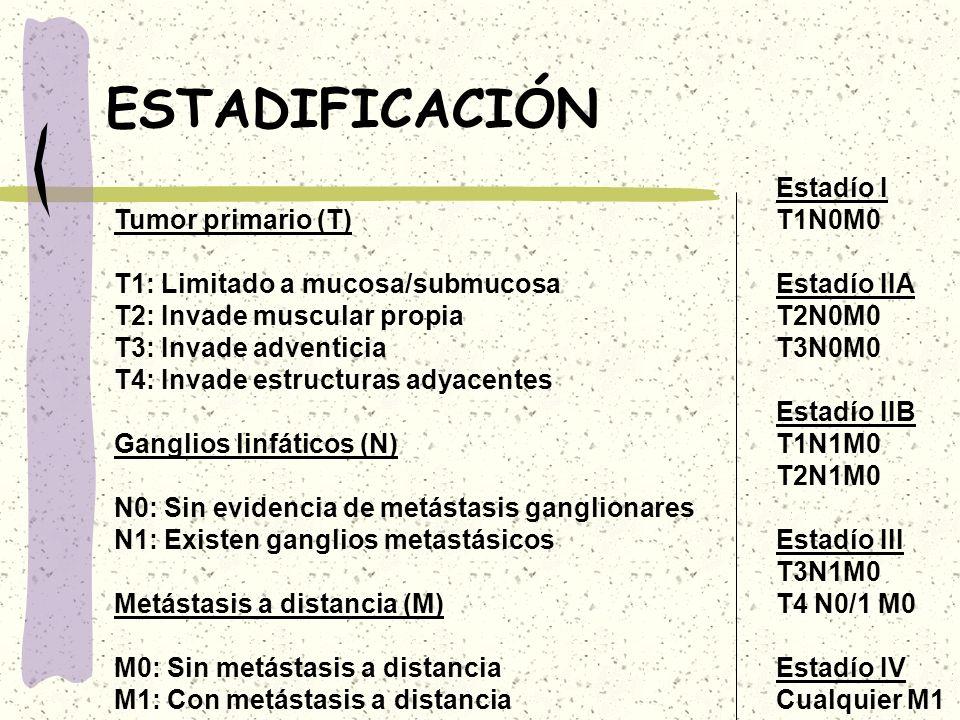 ESTADIFICACIÓN Tumor primario (T) T1: Limitado a mucosa/submucosa T2: Invade muscular propia T3: Invade adventicia T4: Invade estructuras adyacentes G