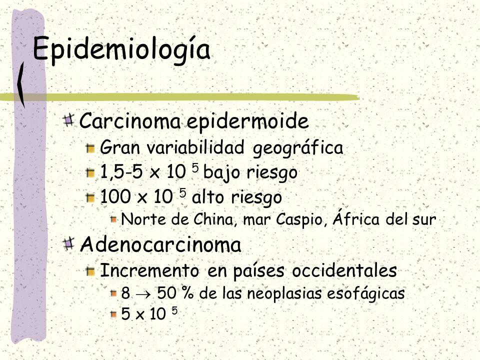 Epidemiología Edad > 5ª-6ª década Sexo Hombre:mujer 5:1 Raza Negra: epidermoide Blanca: adenocarcinoma