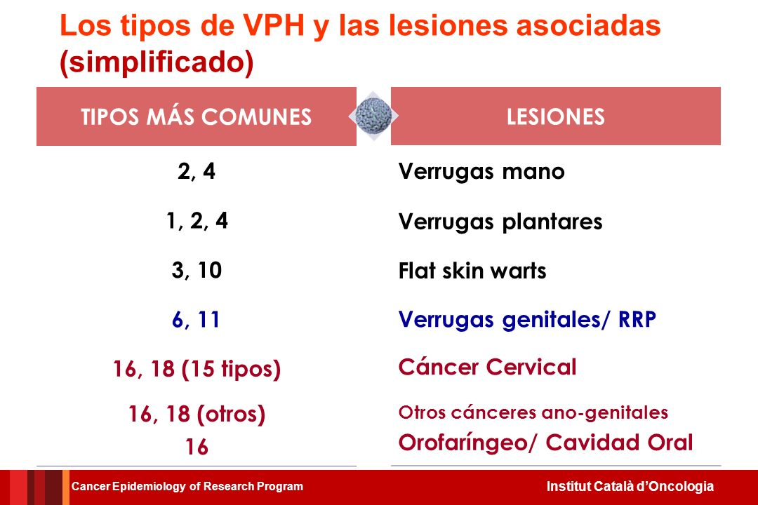 Institut Català dOncologia Tipos de cáncer relacionados con el VPH y las condiciones en los hombres Cancer Epidemiology of Research Program
