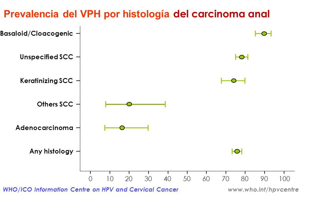 Incidencia de cáncer anal – tendencia Registro SEER 1992 - 2005 (EE.UU.) MUJERES HOMBRES Edad - tasas de incidencia ajustadas SEER y el 95% intervalos
