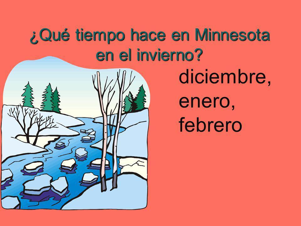¿Qué tiempo hace en Minnesota en el invierno? diciembre, enero, febrero