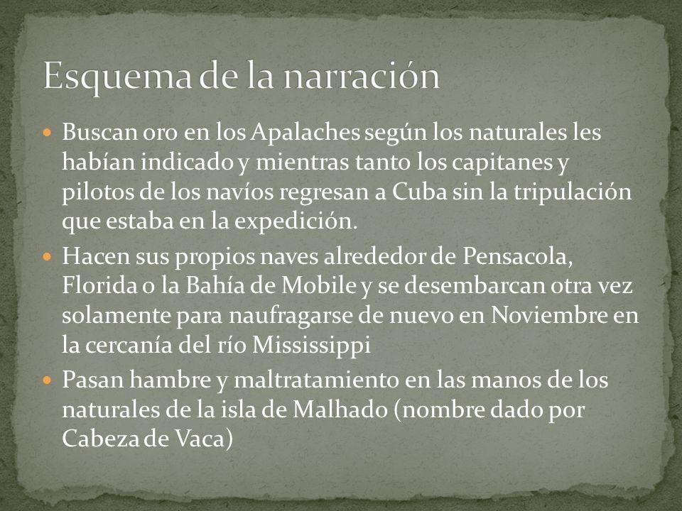Buscan oro en los Apalaches según los naturales les habían indicado y mientras tanto los capitanes y pilotos de los navíos regresan a Cuba sin la trip