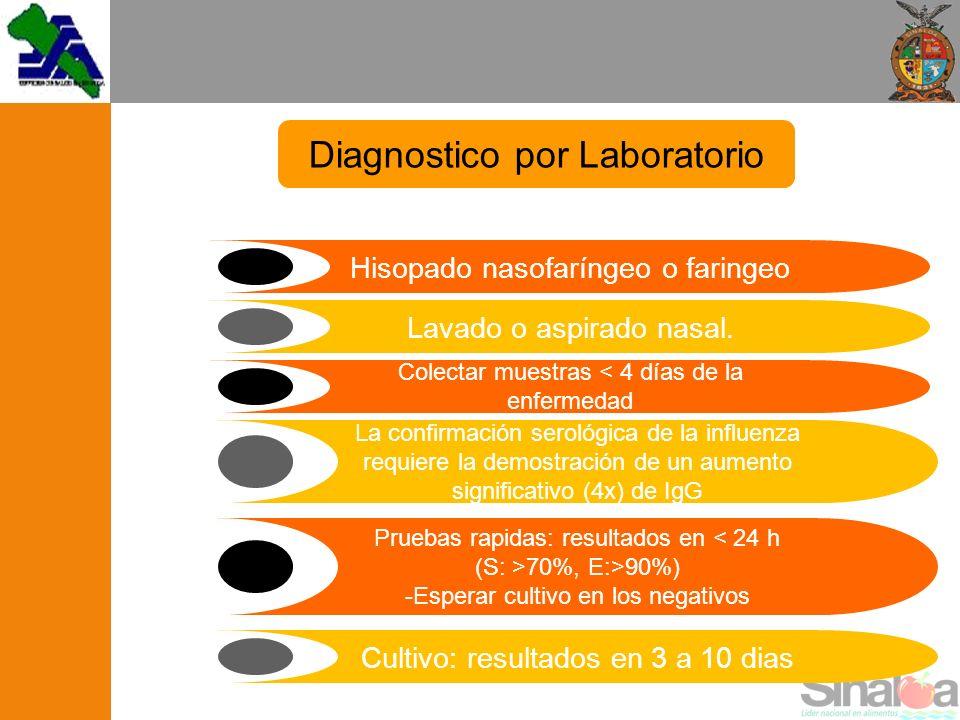 Diagnostico por Laboratorio Hisopado nasofaríngeo o faringeo Lavado o aspirado nasal. Colectar muestras < 4 días de la enfermedad La confirmación sero