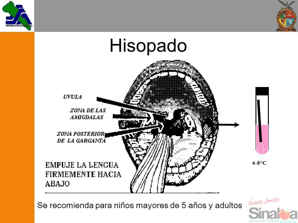 Se recomienda para niños mayores de 5 años y adultos 4-8°C Hisopado