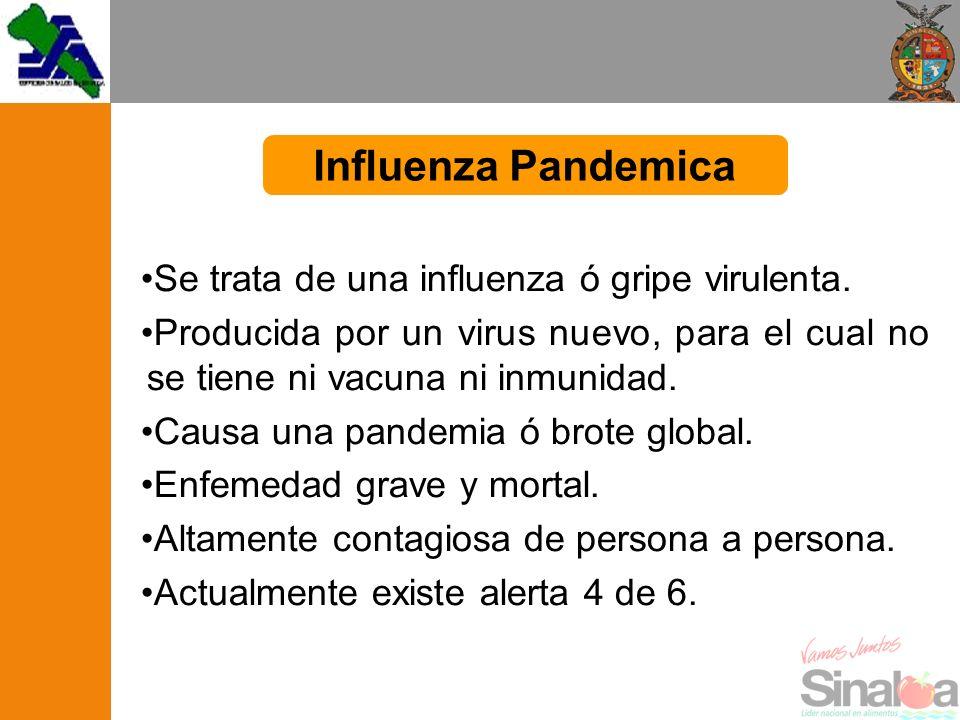 Se trata de una influenza ó gripe virulenta. Producida por un virus nuevo, para el cual no se tiene ni vacuna ni inmunidad. Causa una pandemia ó brote