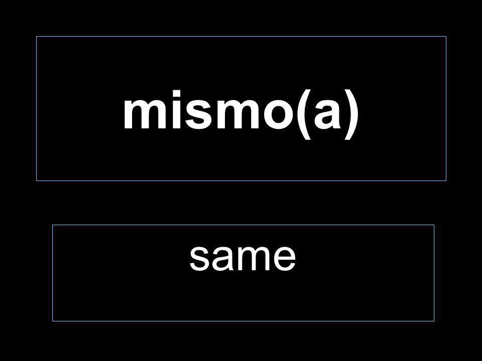 mismo(a) same
