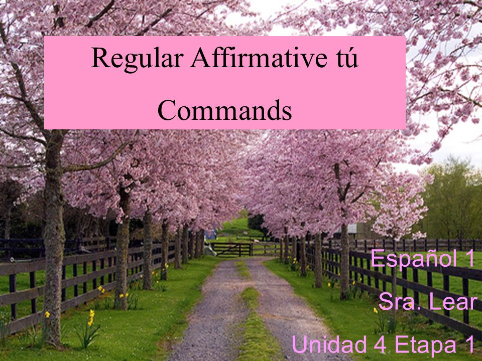 Students will learn how to use Regular Affirmative tú commands to tell people what to do.