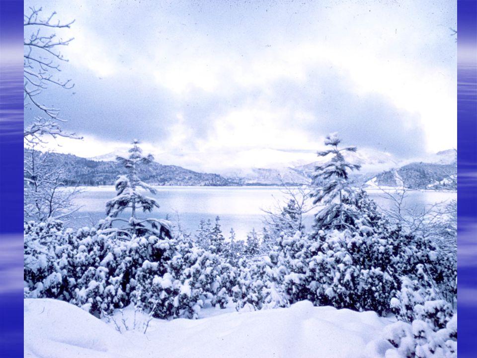 nevar to snow