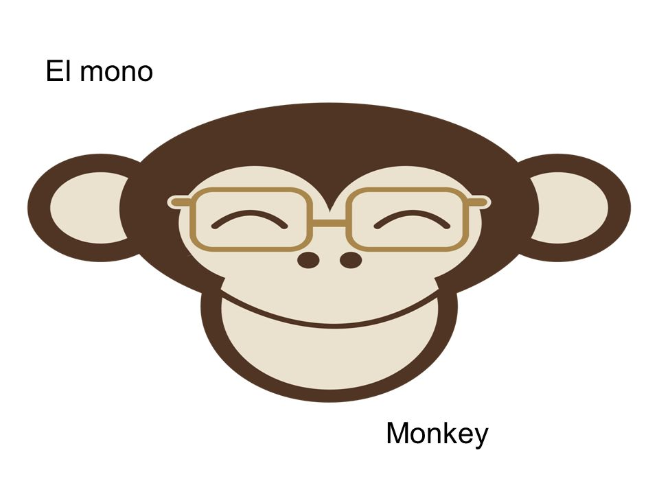 El mono Monkey
