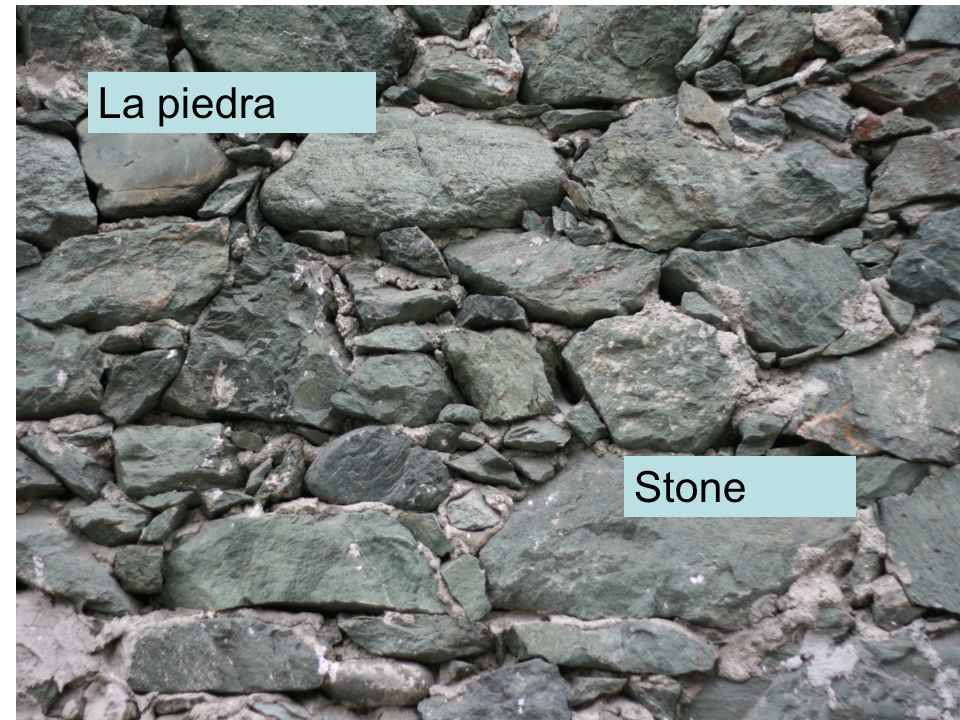 La piedra Stone