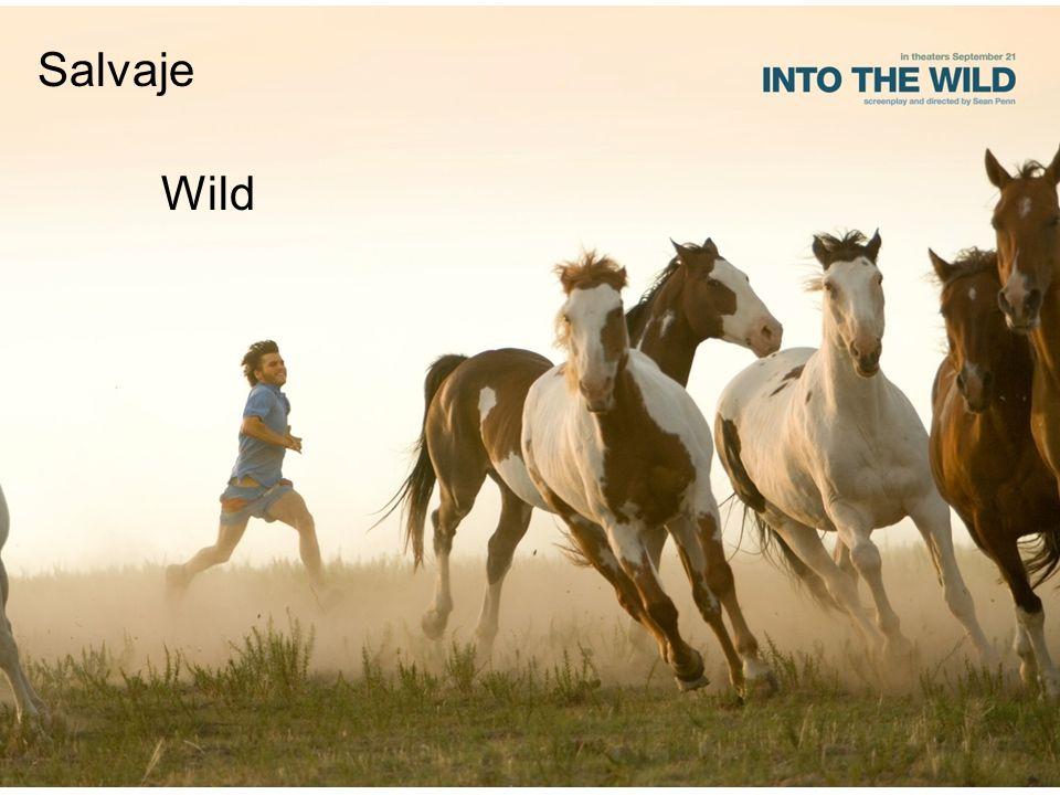 Salvaje Wild