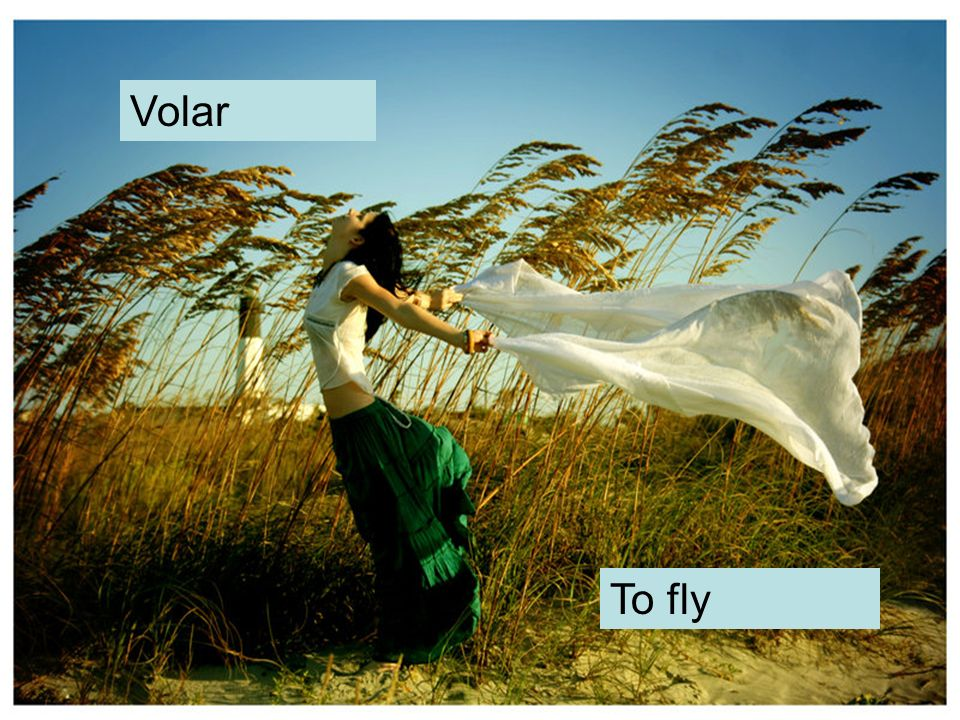 Volar To fly