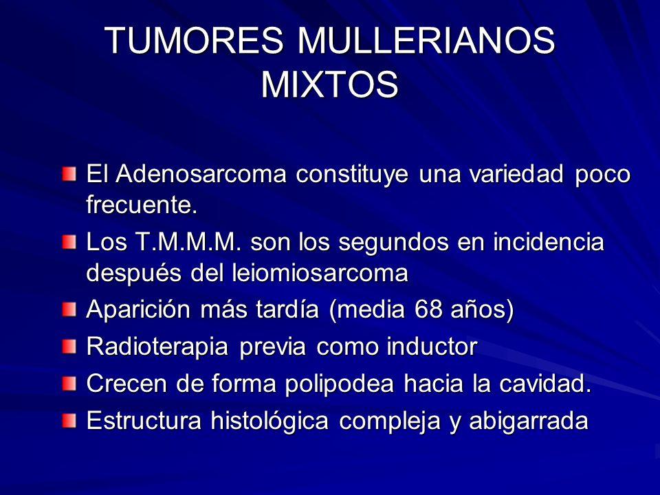 TUMORES MULLERIANOS MIXTOS El Adenosarcoma constituye una variedad poco frecuente. Los T.M.M.M. son los segundos en incidencia después del leiomiosarc