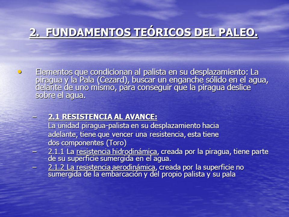 2. FUNDAMENTOS TEÓRICOS DEL PALEO. Elementos que condicionan al palista en su desplazamiento: La piragua y la Pala (Cezard), buscar un enganche sólido