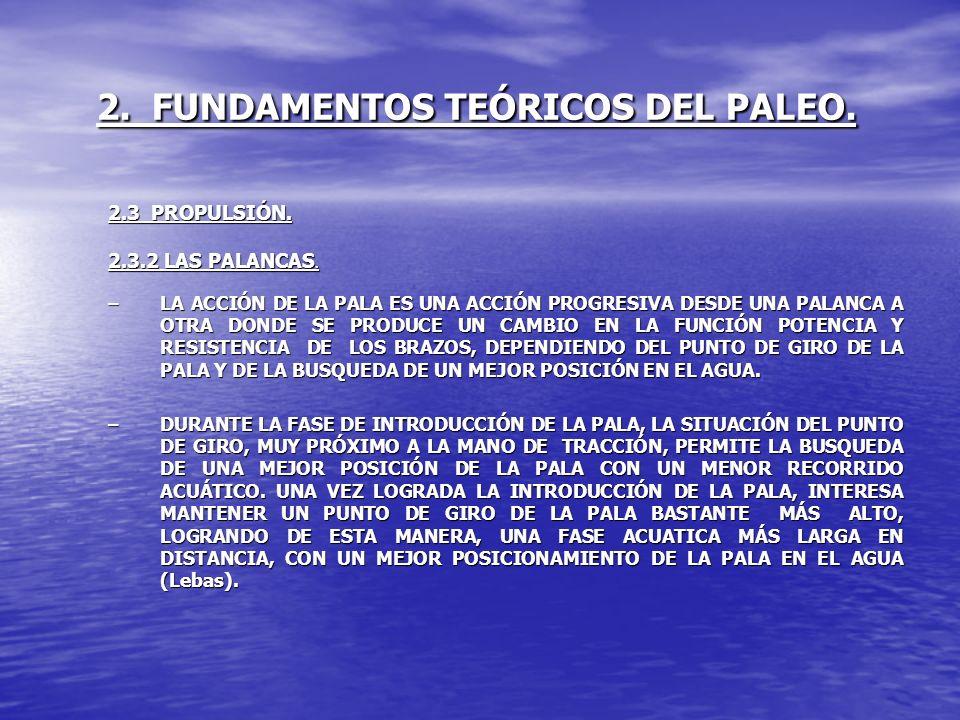 2. FUNDAMENTOS TEÓRICOS DEL PALEO. 2.3 PROPULSIÓN. 2.3.2 LAS PALANCAS. –LA ACCIÓN DE LA PALA ES UNA ACCIÓN PROGRESIVA DESDE UNA PALANCA A OTRA DONDE S