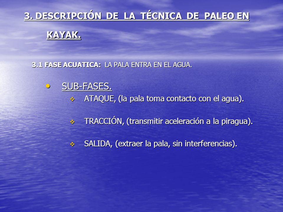 3. DESCRIPCIÓN DE LA TÉCNICA DE PALEO EN KAYAK. 3.1 FASE ACUATICA: LA PALA ENTRA EN EL AGUA. SUB-FASES. SUB-FASES. ATAQUE, (la pala toma contacto con