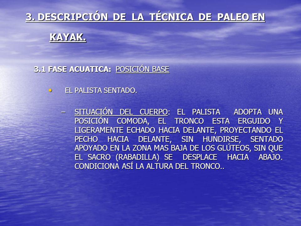 3. DESCRIPCIÓN DE LA TÉCNICA DE PALEO EN KAYAK. 3.1 FASE ACUATICA: POSICIÓN BASE EL PALISTA SENTADO. EL PALISTA SENTADO. –SITUACIÓN DEL CUERPO: EL PAL