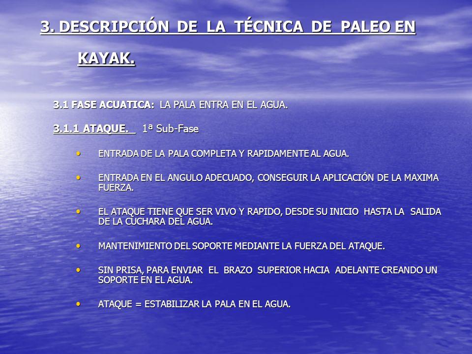 3. DESCRIPCIÓN DE LA TÉCNICA DE PALEO EN KAYAK. 3.1 FASE ACUATICA: LA PALA ENTRA EN EL AGUA. 3.1.1 ATAQUE. 1ª Sub-Fase ENTRADA DE LA PALA COMPLETA Y R