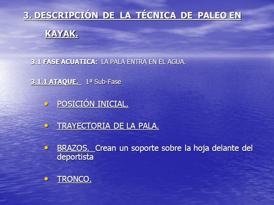 3. DESCRIPCIÓN DE LA TÉCNICA DE PALEO EN KAYAK. 3.1 FASE ACUATICA: LA PALA ENTRA EN EL AGUA. 3.1.1 ATAQUE. 1ª Sub-Fase POSICIÓN INICIAL. POSICIÓN INIC