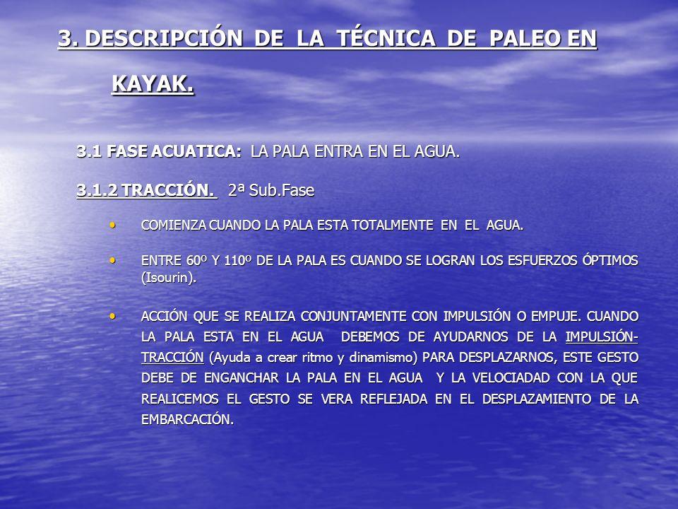 3. DESCRIPCIÓN DE LA TÉCNICA DE PALEO EN KAYAK. 3.1 FASE ACUATICA: LA PALA ENTRA EN EL AGUA. 3.1.2 TRACCIÓN. 2ª Sub.Fase COMIENZA CUANDO LA PALA ESTA