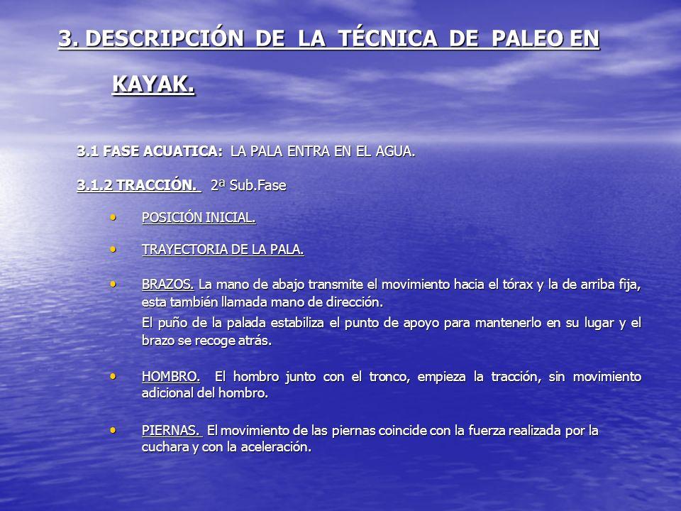 3. DESCRIPCIÓN DE LA TÉCNICA DE PALEO EN KAYAK. 3.1 FASE ACUATICA: LA PALA ENTRA EN EL AGUA. 3.1.2 TRACCIÓN. 2ª Sub.Fase POSICIÓN INICIAL. POSICIÓN IN