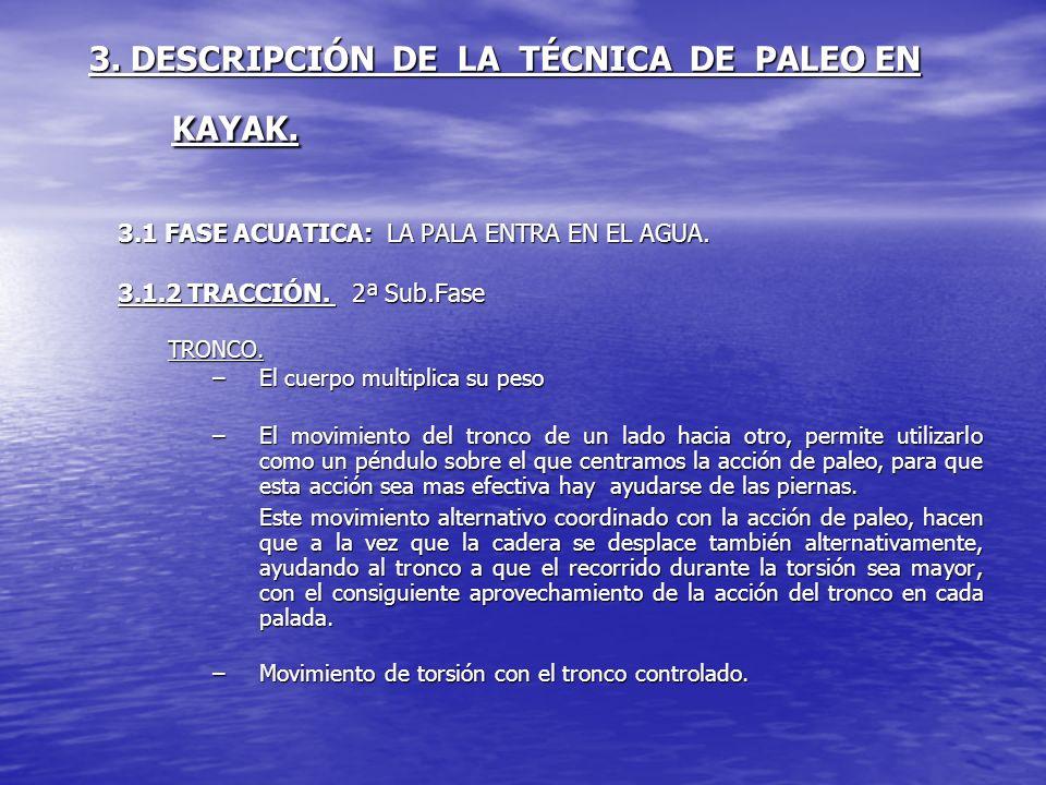 3. DESCRIPCIÓN DE LA TÉCNICA DE PALEO EN KAYAK. 3.1 FASE ACUATICA: LA PALA ENTRA EN EL AGUA. 3.1.2 TRACCIÓN. 2ª Sub.Fase TRONCO. –El cuerpo multiplica
