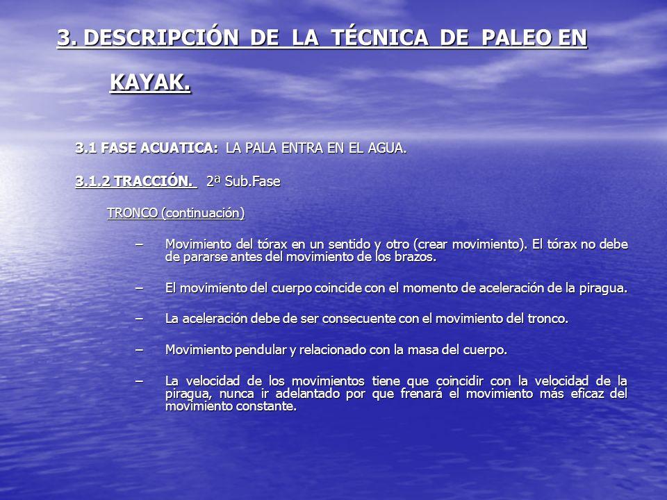 3. DESCRIPCIÓN DE LA TÉCNICA DE PALEO EN KAYAK. 3.1 FASE ACUATICA: LA PALA ENTRA EN EL AGUA. 3.1.2 TRACCIÓN. 2ª Sub.Fase TRONCO (continuación) –Movimi