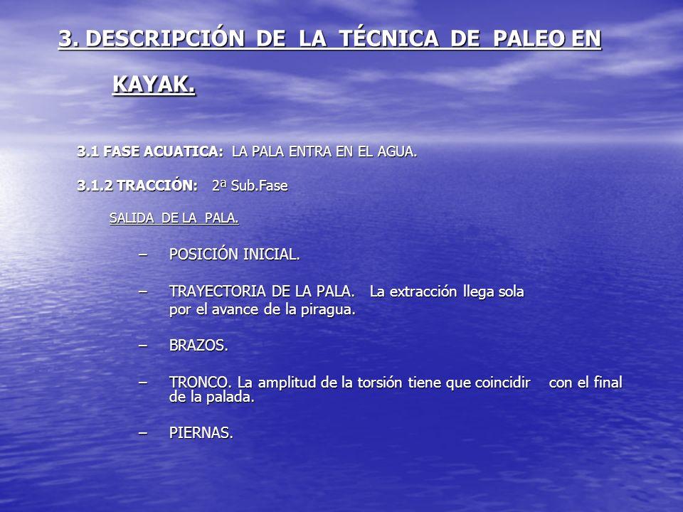 3. DESCRIPCIÓN DE LA TÉCNICA DE PALEO EN KAYAK. 3.1 FASE ACUATICA: LA PALA ENTRA EN EL AGUA. 3.1.2 TRACCIÓN: 2ª Sub.Fase SALIDA DE LA PALA. –POSICIÓN