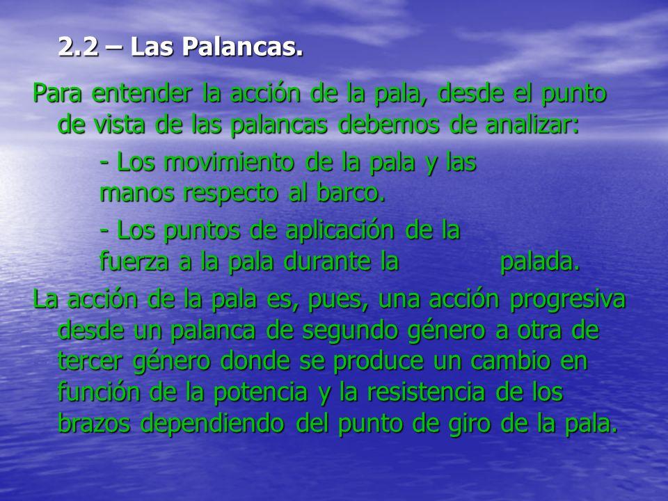 2.2 – Las Palancas. Para entender la acción de la pala, desde el punto de vista de las palancas debemos de analizar: - Los movimiento de la pala y las