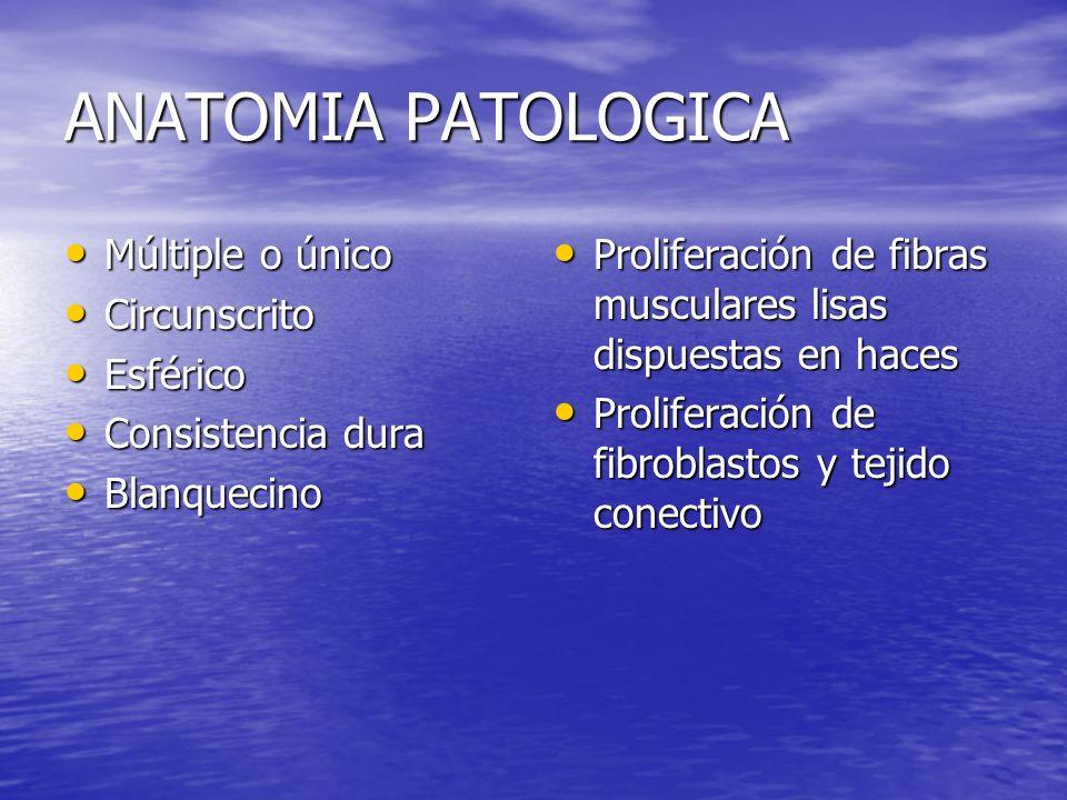 Conducta Expectante Leiomiomas pequeños (cuanto ?) Leiomiomas pequeños (cuanto ?) Leiomiomas asintomáticos Leiomiomas asintomáticos Durante la gestación Durante la gestación