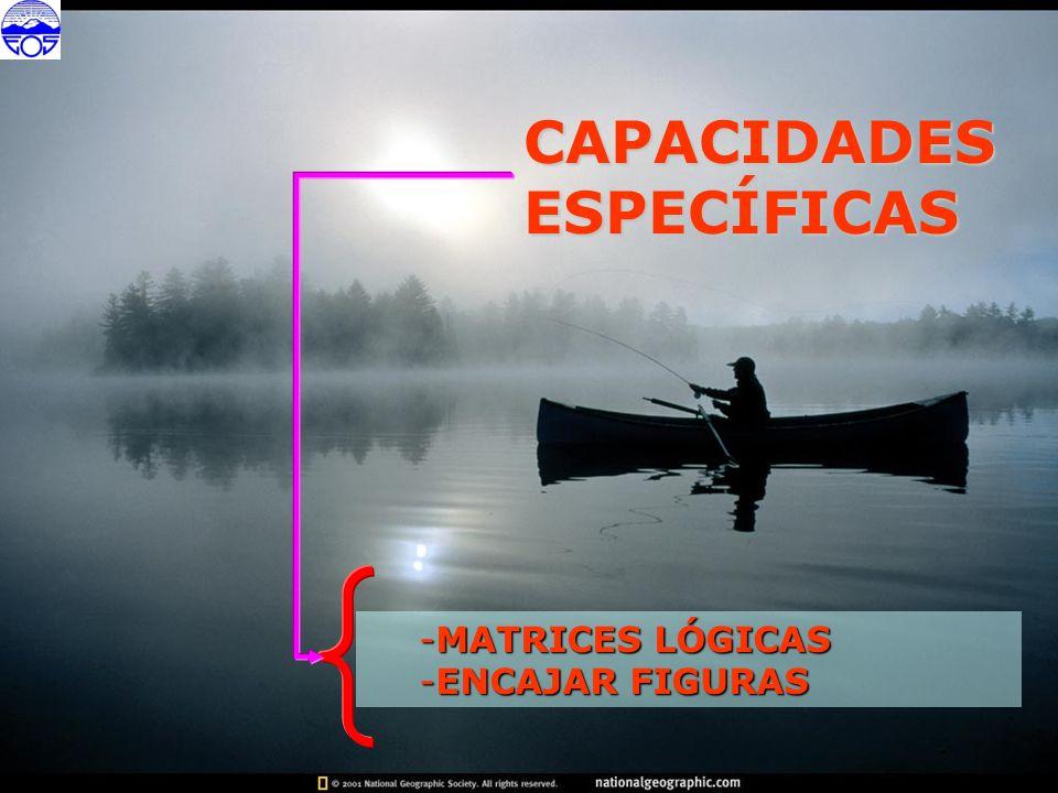 CAPACIDADESESPECÍFICAS -MATRICES LÓGICAS -ENCAJAR FIGURAS