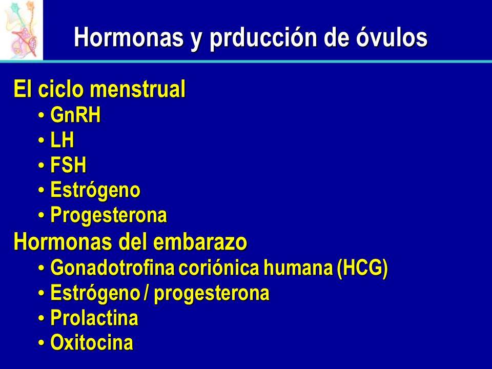 Hormonas y prducción de óvulos El ciclo menstrual GnRH GnRH LH LH FSH FSH Estrógeno Estrógeno Progesterona Progesterona Hormonas del embarazo Gonadotr