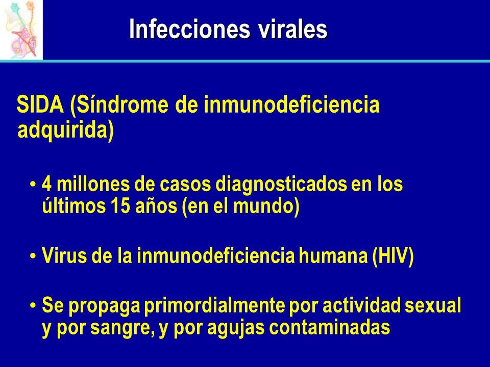 Infecciones virales SIDA (Síndrome de inmunodeficiencia adquirida) 4 millones de casos diagnosticados en los últimos 15 años (en el mundo) Virus de la