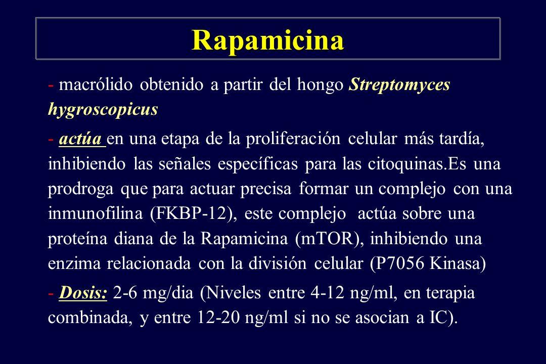 Rapamicina - macrólido obtenido a partir del hongo Streptomyces hygroscopicus - actúa en una etapa de la proliferación celular más tardía, inhibiendo