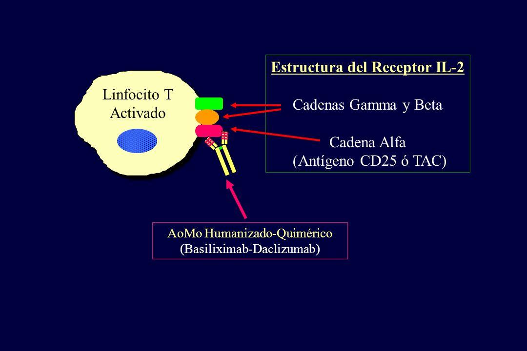 Linfocito T Activado Estructura del Receptor IL-2 Cadenas Gamma y Beta Cadena Alfa (Antígeno CD25 ó TAC) AoMo Humanizado-Quimérico (Basiliximab-Dacliz