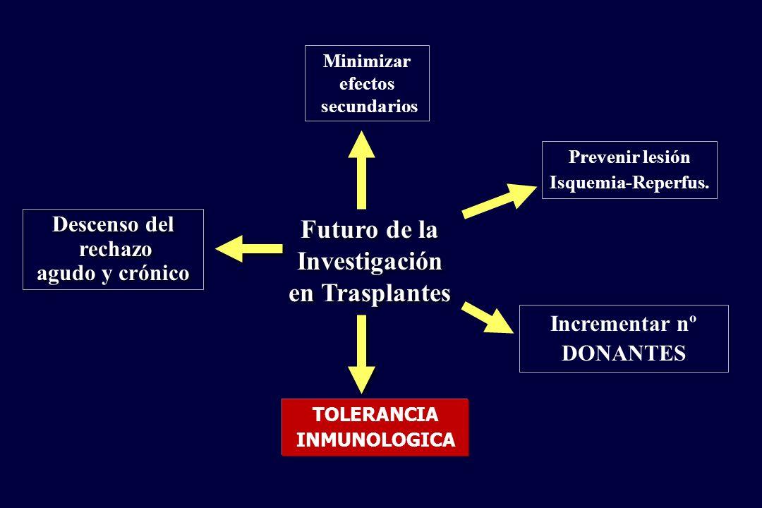 Incrementar nº DONANTES Prevenir lesión Isquemia-Reperfus. Minimizar efectos secundarios Descenso del rechazo agudo y crónico Descenso del rechazo agu