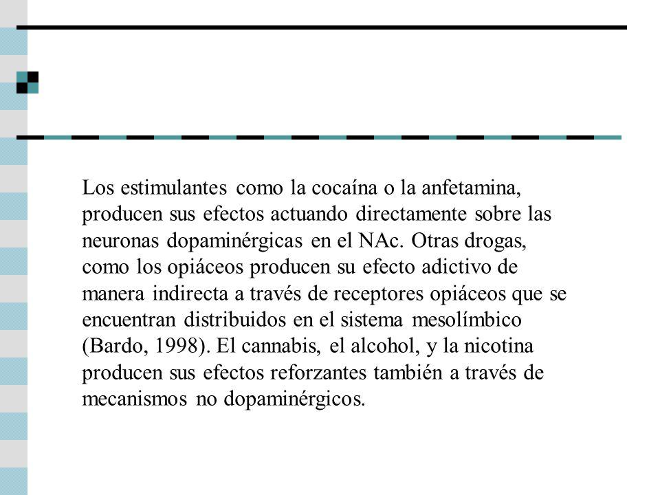 Los estimulantes como la cocaína o la anfetamina, producen sus efectos actuando directamente sobre las neuronas dopaminérgicas en el NAc. Otras drogas