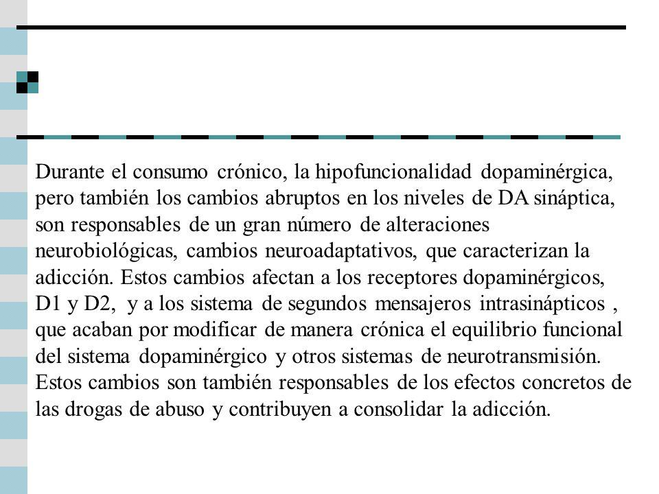 Durante el consumo crónico, la hipofuncionalidad dopaminérgica, pero también los cambios abruptos en los niveles de DA sináptica, son responsables de