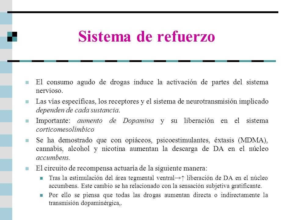 Sistema de refuerzo El consumo agudo de drogas induce la activación de partes del sistema nervioso. Las vías específicas, los receptores y el sistema