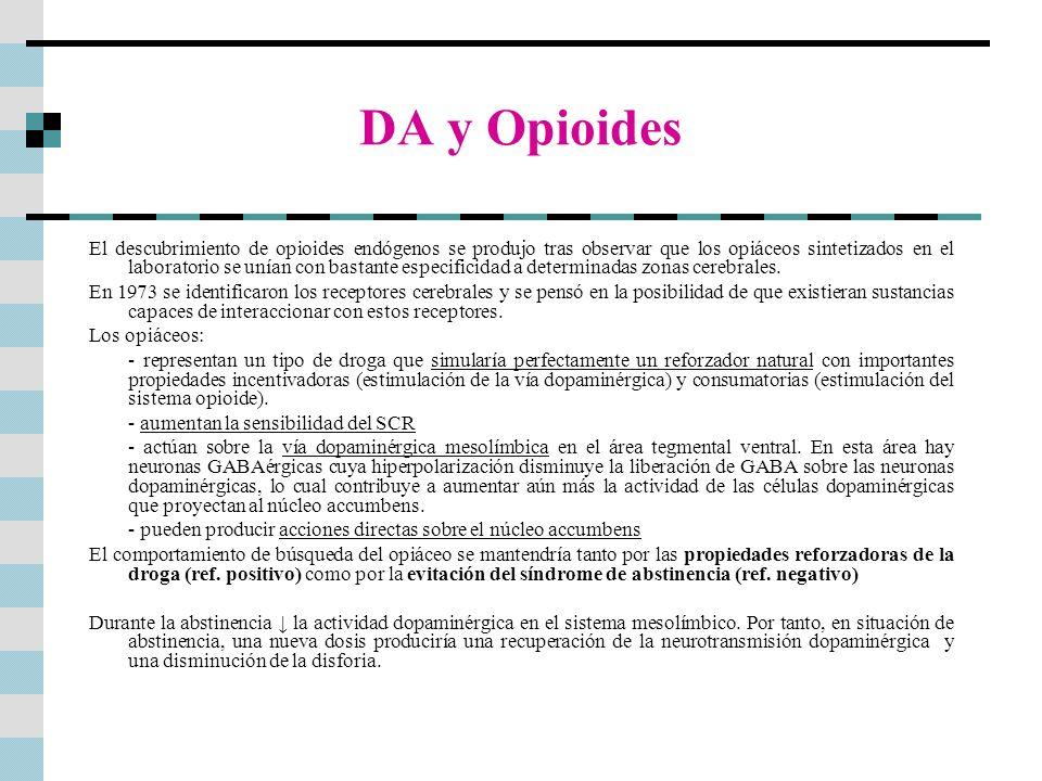 DA y Opioides El descubrimiento de opioides endógenos se produjo tras observar que los opiáceos sintetizados en el laboratorio se unían con bastante e
