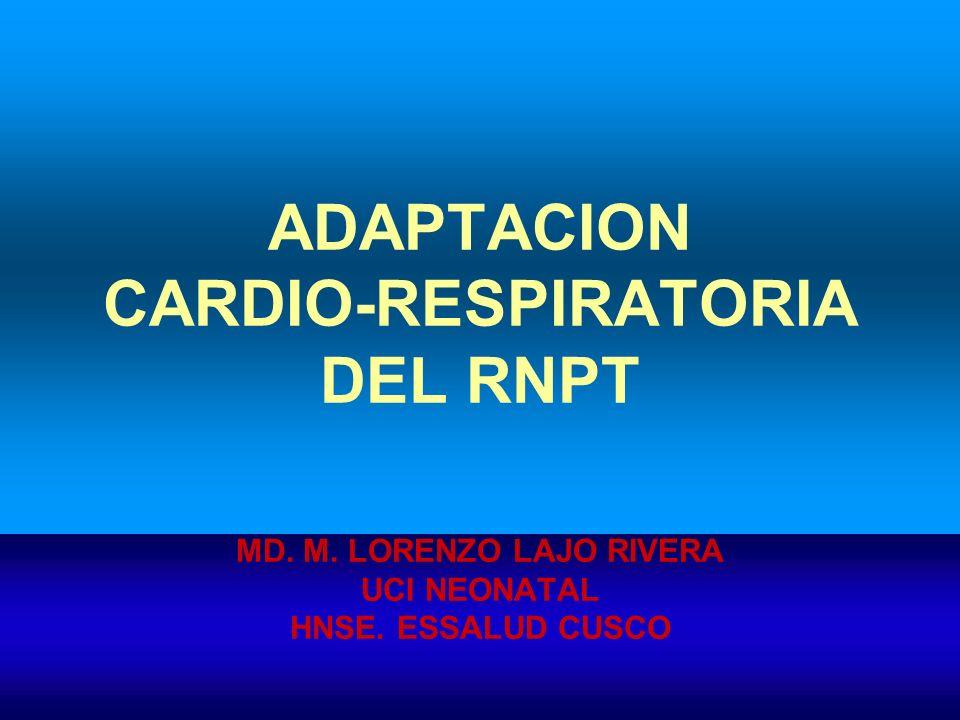 OXIDO NITRICO RADICAL INORGANICO LIBRE PRINCIPAL COMPONENTE DE FACTOR RELAJADOR DERIV.