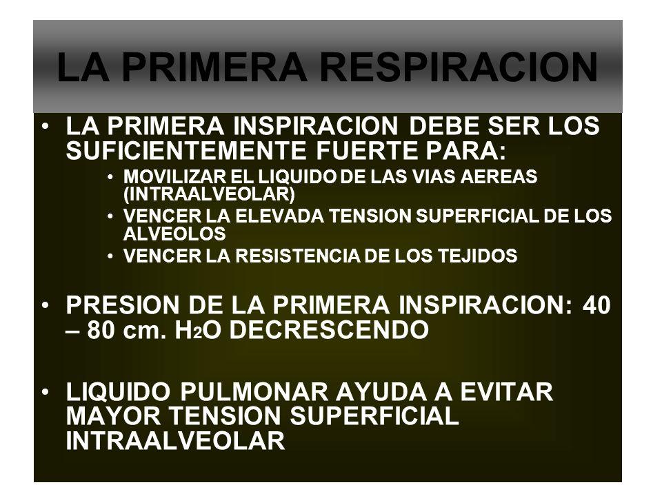 LA PRIMERA RESPIRACION LA PRIMERA INSPIRACION DEBE SER LOS SUFICIENTEMENTE FUERTE PARA: MOVILIZAR EL LIQUIDO DE LAS VIAS AEREAS (INTRAALVEOLAR) VENCER