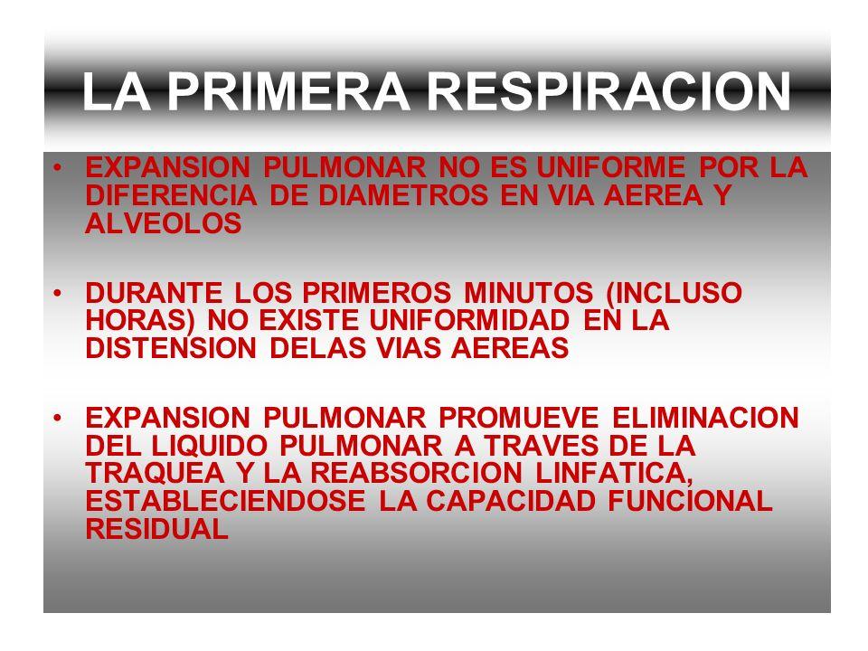 LA PRIMERA RESPIRACION EXPANSION PULMONAR NO ES UNIFORME POR LA DIFERENCIA DE DIAMETROS EN VIA AEREA Y ALVEOLOS DURANTE LOS PRIMEROS MINUTOS (INCLUSO