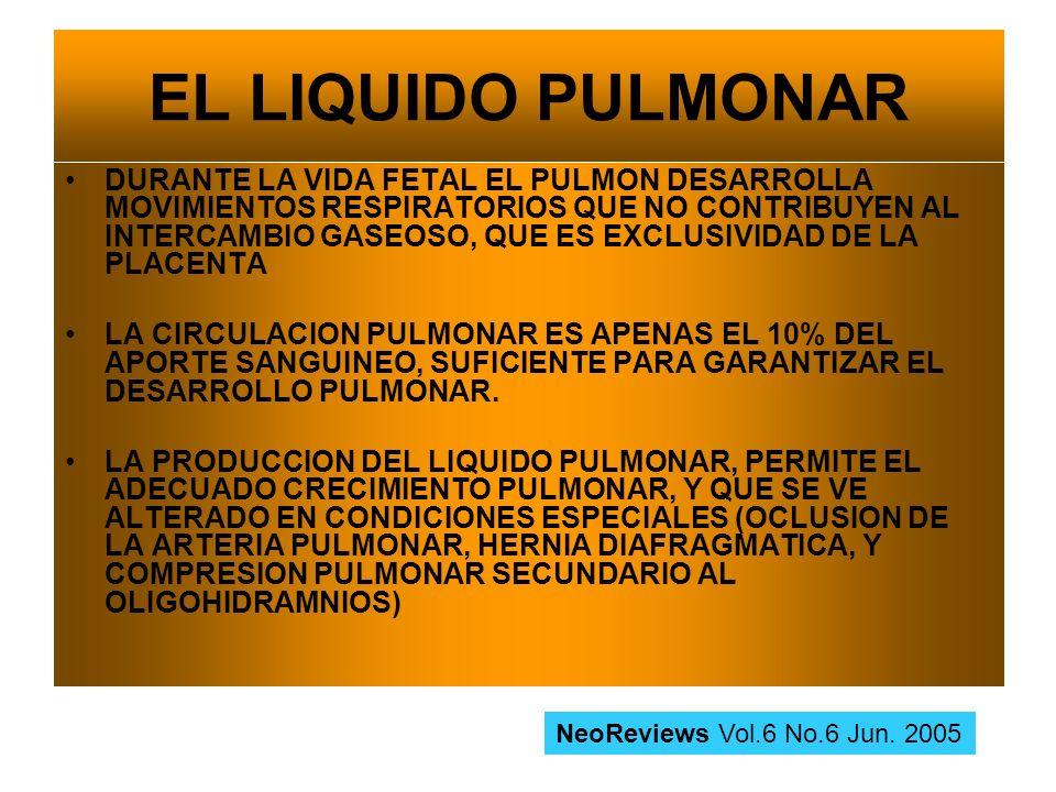 EL LIQUIDO PULMONAR DURANTE LA VIDA FETAL EL PULMON DESARROLLA MOVIMIENTOS RESPIRATORIOS QUE NO CONTRIBUYEN AL INTERCAMBIO GASEOSO, QUE ES EXCLUSIVIDA