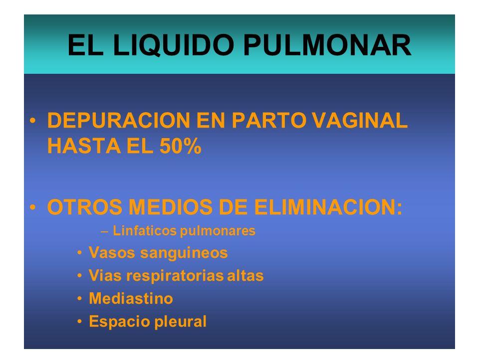 EL LIQUIDO PULMONAR DEPURACION EN PARTO VAGINAL HASTA EL 50% OTROS MEDIOS DE ELIMINACION: –Linfaticos pulmonares Vasos sanguineos Vias respiratorias a