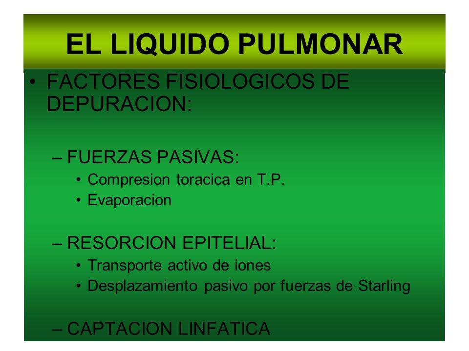 EL LIQUIDO PULMONAR FACTORES FISIOLOGICOS DE DEPURACION: –FUERZAS PASIVAS: Compresion toracica en T.P. Evaporacion –RESORCION EPITELIAL: Transporte ac